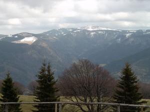 Probleme mit Funklöchern: das Carsharing im Hochschwarzwald ist zu seinem Funktionieren auf ein lückenloses Mobilfunknetz angewiesen.